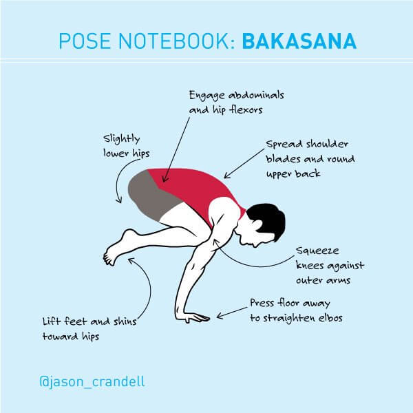 Bakasana | Crane Pose | Crow Pose | Jason Crandell Yoga Method