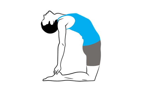 Camel Pose Ustrasana - Glutes in Backbends