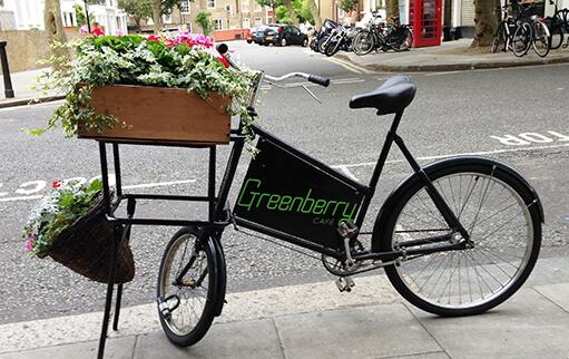 greenberry_bike_crop