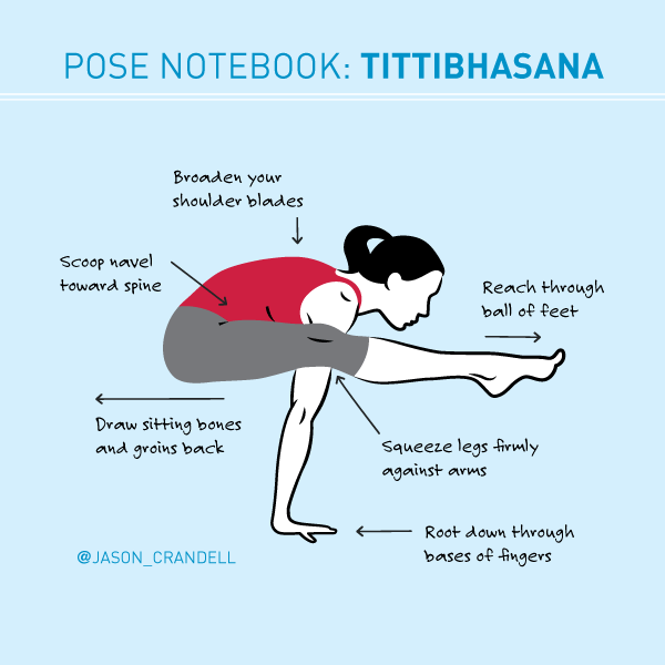 Alignment for Tittibhasana | Jason Crandell Vinyasa Yoga Method | JasonYoga.com