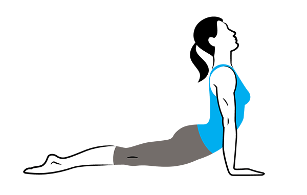 Upward Facing Dog Pose Urdvha Mukha Svanasana - Glutes in Backbends