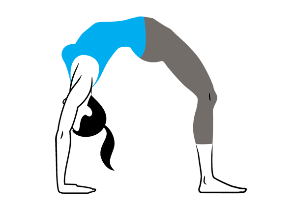 Urdhva Dhanurasana Upward Facing Bow Pose - Glutes in Backbends