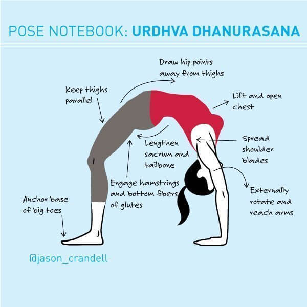 Urdhva Dhanurasana Wheel Pose Yoga Backbend | Jason Crandell Yoga Method